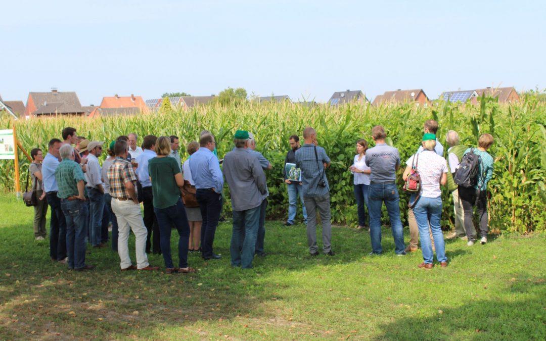 Feldtag des Projekts Energiepflanzenanbau und Biodiversität