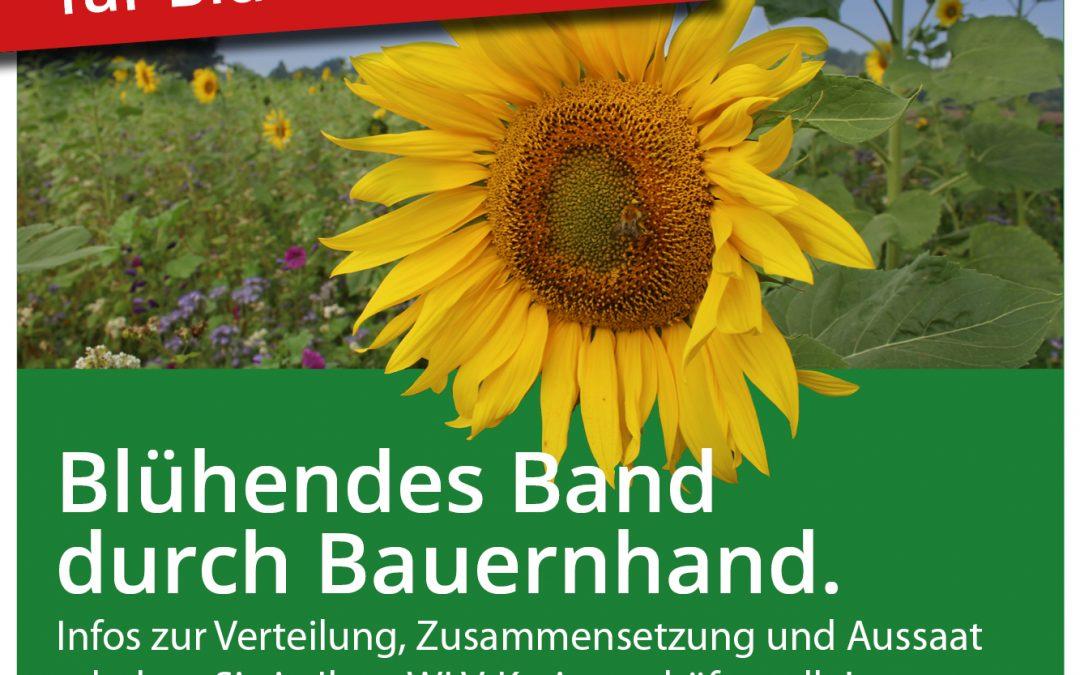 Blühendes Band – Kostenloses Saatgut