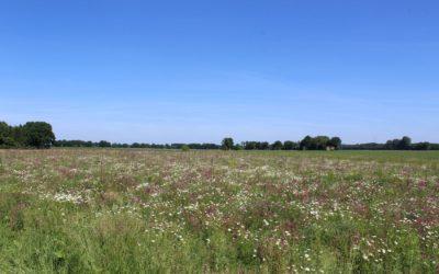 PIK auf rund 40 ha für die Stadt Bochum